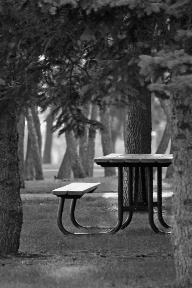 black metal wood top bench